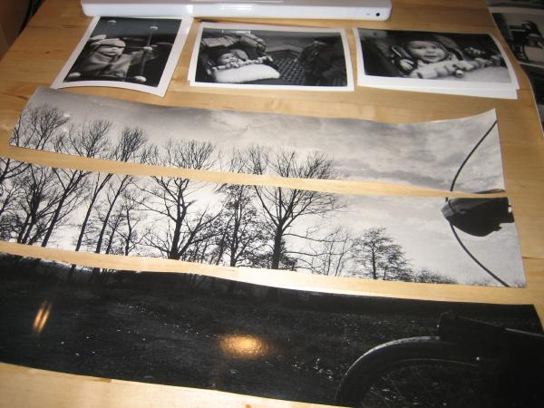 photo of more prints, including one assembled from three long strips