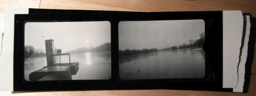 Contact prints from the Box camera film