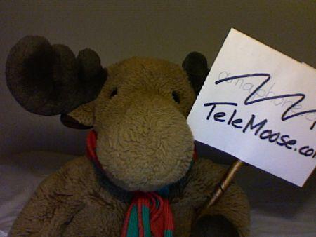 Elk holding a TeleMoose sign