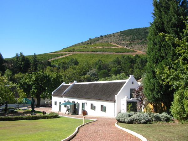 Morgenhof wine farm