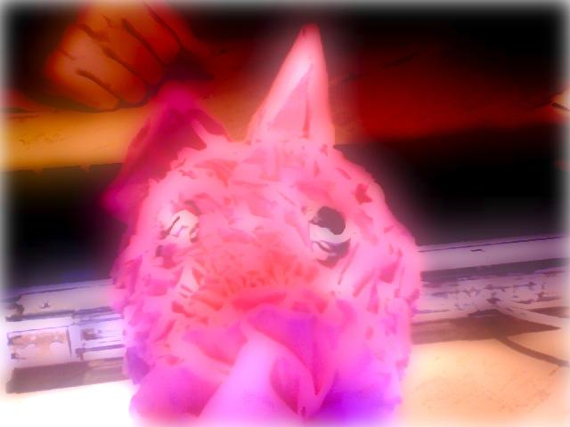 Photo Booth distorted pig