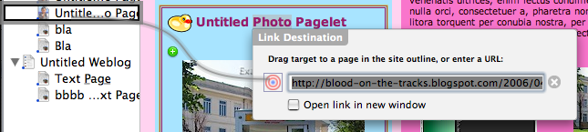Screenshot of linking to a page within the own site. Also note that the link field is pre-filled with Safari's current location URL