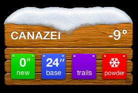 Ski widget