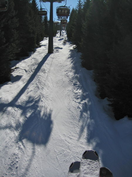 View from a chairlift going through a forest with skitips visible at the bottom