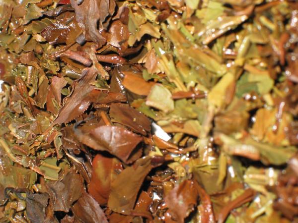 Brewed tea leaves