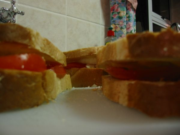 Tomato and Onion Sandwiches before being braaied