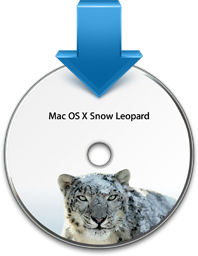 MacOSX.6 Installer Icon
