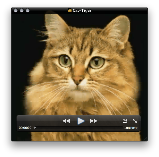 QuickTime Player playback window
