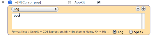 Breakpoints window of XCode 3