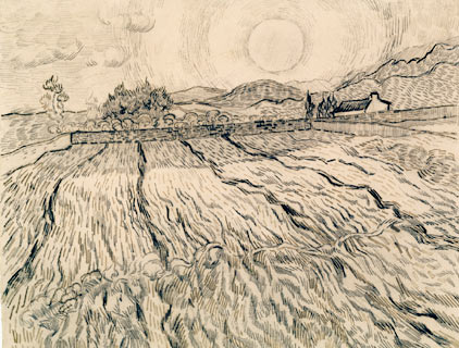 van Gogh drawing with a field