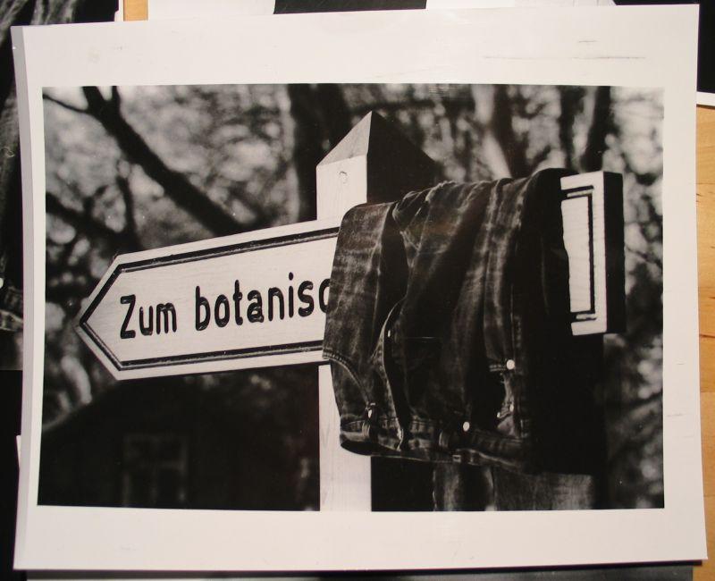 Photo with sign 'Zum botanischen Garten'